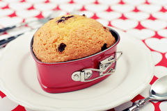 Cranberry muffin Royalty Free Stock Photos