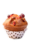 Cranberry muffin. Large cranberry muffin in vertical format isolated on white background with room for text Royalty Free Stock Image