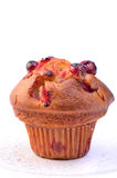 Cranberry muffin. Large cranberry muffin in vertical format on white background with room for text Royalty Free Stock Photos