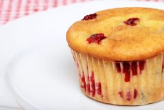 Cranberry muffin on a plate Royalty Free Stock Photo