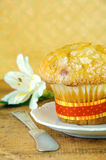 Cranberry Muffin and White Flower Royalty Free Stock Photography