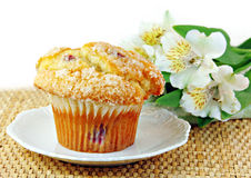 Cranberry Muffin and White Flowers Royalty Free Stock Photography