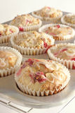 Cranberry muffins Royalty Free Stock Images
