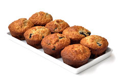 Cranberry muffins. Eight cranberry muffins in a rectangular plate Royalty Free Stock Photos