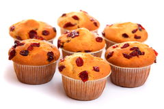 Cranberry muffins Royalty Free Stock Photography