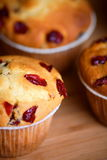 Cranberry muffins Stock Images