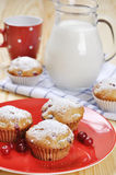 Cranberry muffins. On red plate with fresh berries and milk in a glass jug Stock Photography