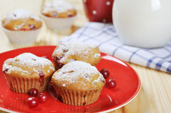 Cranberry muffins. On red plate with fresh berries and milk in a glass jug Stock Images