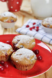 Cranberry muffins. On red plate with fresh berries and milk in a glass jug Stock Image