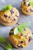 Cranberry muffins Obraz Stock