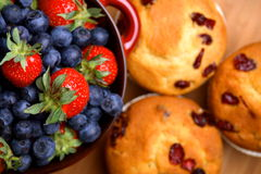 Cranberry muffins with bowl of fruit Royalty Free Stock Image