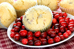 Cranberry Muffins and Fresh Cranberries Royalty Free Stock Photos