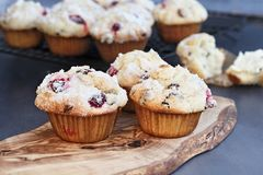 Cranberry Muffins Fresh from the Oven. Cranberry Muffins with lemon sugar topping on a rustic cutting board with loose berries. Extreme shallow depth of field stock photo