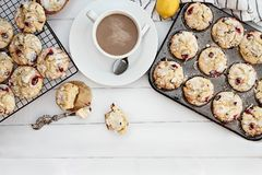 Cranberry Muffins and Hot Coffee. Hot steaming coffee and cranberry muffins with butter over a rustic white table background. Image shot from above with free stock photography