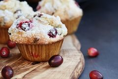Cranberry Muffins with Lemon Sugar. Topping on a rustic cutting board with loose berries. Extreme shallow depth of field with selective focus on muffin in royalty free stock images