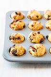 Cranberry muffins in a muffin tin Royalty Free Stock Photo