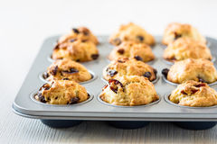 Cranberry muffins in a muffin tin Royalty Free Stock Photography