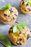 Cranberry muffins. On wooden background with mint Stock Image