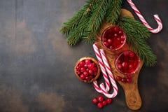Cranberry napój i świeże jagody Zdjęcie Stock