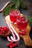 Cranberry napój i świeże jagody Obrazy Royalty Free