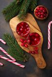 Cranberry napój i świeże jagody Obraz Royalty Free