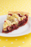 Cranberry Nut Pie Royalty Free Stock Images