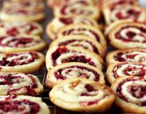 Cranberry Nut Swirl Cookies Stock Photography