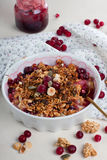 Cranberry, nuts and granola Stock Photos