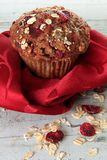 Cranberry bran muffin Royalty Free Stock Photos