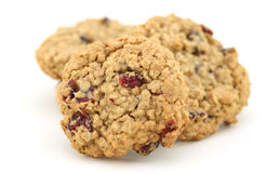 Cranberry oatmeal cookies Stock Image