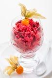 Cranberry- och hallonsorbet för jul royaltyfri foto