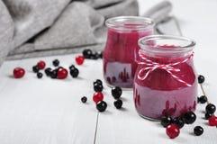 Cranberry- och svartvinbärsmoothie fotografering för bildbyråer