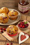 Cranberry Orange Muffins Stock Images