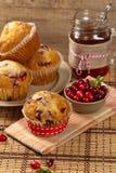 Cranberry Orange Muffins Stock Image