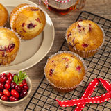Cranberry Orange Muffins Royalty Free Stock Images