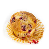 Cranberry Orange Muffins Stock Photography
