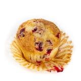 Cranberry Orange Muffins Stock Photography