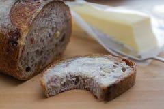 Cranberry orzecha włoskiego chleb Obrazy Royalty Free
