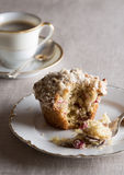 Cranberry Pecan Muffin Royalty Free Stock Photo