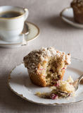 Cranberry Pecan Muffins Stock Photography