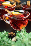 Cranberry Punch Stock Photography