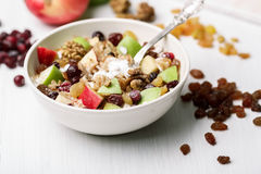 Cranberry raisins apple cereal Royalty Free Stock Photo