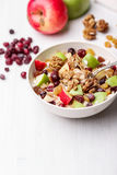 Cranberry raisins apple cereal Stock Images