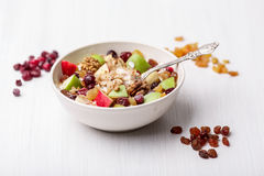 Cranberry raisins apple cereal Royalty Free Stock Images