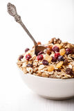 Cranberry raisins cereal Royalty Free Stock Photo