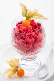 Cranberry and raspberry sorbet for Christmas. Sorbet for Christmas with cranberry, raspberry and strawberry royalty free stock photo