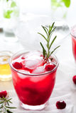 Cranberry, rosemary, gin fizz, cocktail Stock Photography