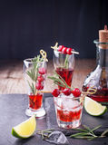 Cranberry, rosemary, gin fizz, cocktail on a white Stock Photos