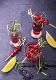 Cranberry, rosemary, gin fizz, cocktail on a white Royalty Free Stock Photography