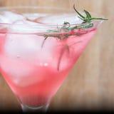 Cranberry rozmaryny Martini Obrazy Royalty Free